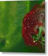 Fruit II Metal Print