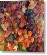 Fruit Of The Vine Metal Print