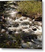 Galena Creek Metal Print