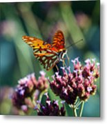 Garden Butterfly Metal Print