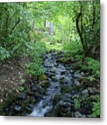 Garden Springs Creek In Spokane Metal Print