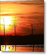 Geese Flying Into The Sunset Metal Print