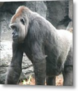 Gentle Giant Metal Print