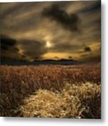 Gift Of Light Metal Print