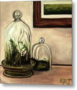 Glass Terrariums Metal Print