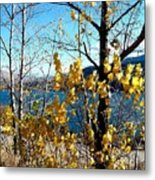 Glimpse Of Kalamalka Lake Metal Print