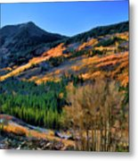 Gold In The Rockies Metal Print