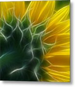 Golden Delight Metal Print