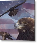 Golden Eagle Collage Metal Print