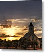 Golden Morning Light  Metal Print