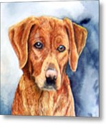 Golden Retriever Sara Metal Print