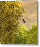 Goldfinch And Forsythea Metal Print