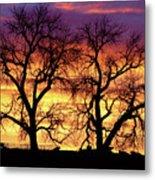 Good Morning Cows Colorful Sunrise Metal Print