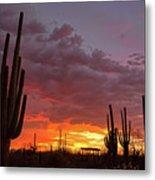 Goodnight Tucson Metal Print