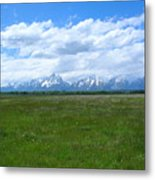 Grand Tetons Meadow Metal Print