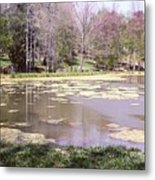 Grandpa's Pond Metal Print