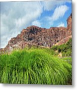 Grass Along John Day River In Central Oregon Metal Print