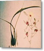 Grass And Buds Metal Print