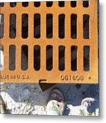 Grate In Summer Sun Metal Print