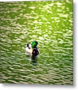 Green Head Metal Print
