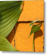 Green On Orange 4 Metal Print
