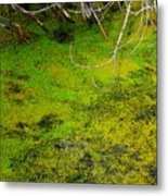Green Spring Soup Metal Print
