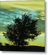 Green Sunset Metal Print