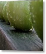 Green Tomato's Metal Print
