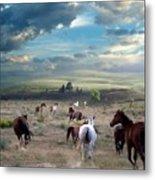 Greener Pastures Metal Print