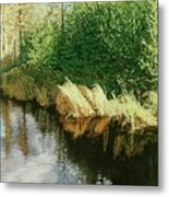 Greenview Beaver Pond Metal Print
