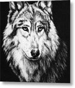 Grey Wolf Metal Print by Melodye Whitaker