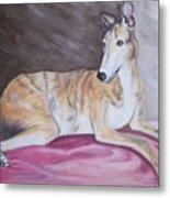 Greyhound Number 2 Metal Print
