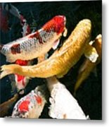 Group Of Koi Fish Metal Print