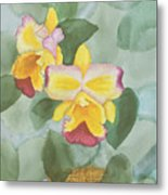 Gypsy Orchids Metal Print