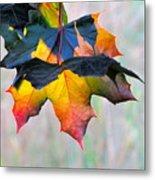 Harbinger Of Autumn Metal Print by Sean Griffin