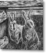 Hare Line  Metal Print