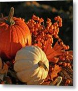 Harvest Colors Metal Print