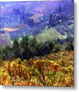 Harvest Time At The Vineyard Metal Print