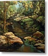 Harvey's Creek Metal Print