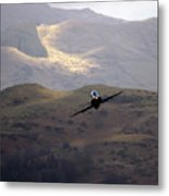 Hawk In The Welsh Mountains Metal Print