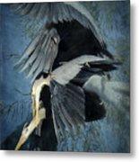 Heron Love  Metal Print