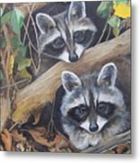 Hidden Twins Metal Print