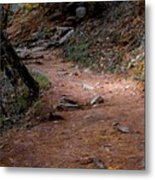 Hiking Trail To Abrams Falls Metal Print by DigiArt Diaries by Vicky B Fuller
