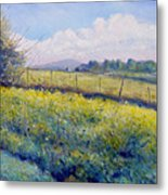 Hills Around Gavignano Italy 2005  Metal Print