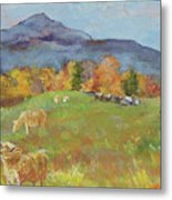 Hillside Grazing Metal Print
