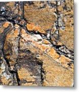 History Of Earth 4 Metal Print