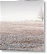 Hoarfrost Pasture Metal Print