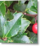 Holly Berry Metal Print