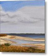 Honeymoon Island Metal Print