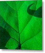 Hooked On Green Metal Print